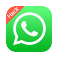 whatsapp plus small